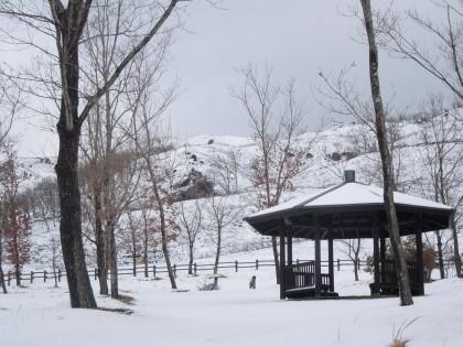 平野台の雪