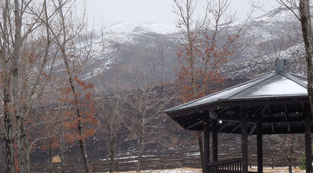 平野台の雪 午後